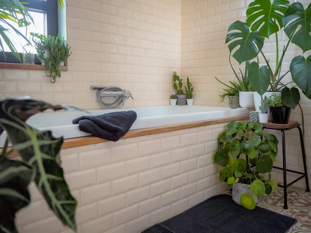 Tropical oasis bathroom with bathtub
