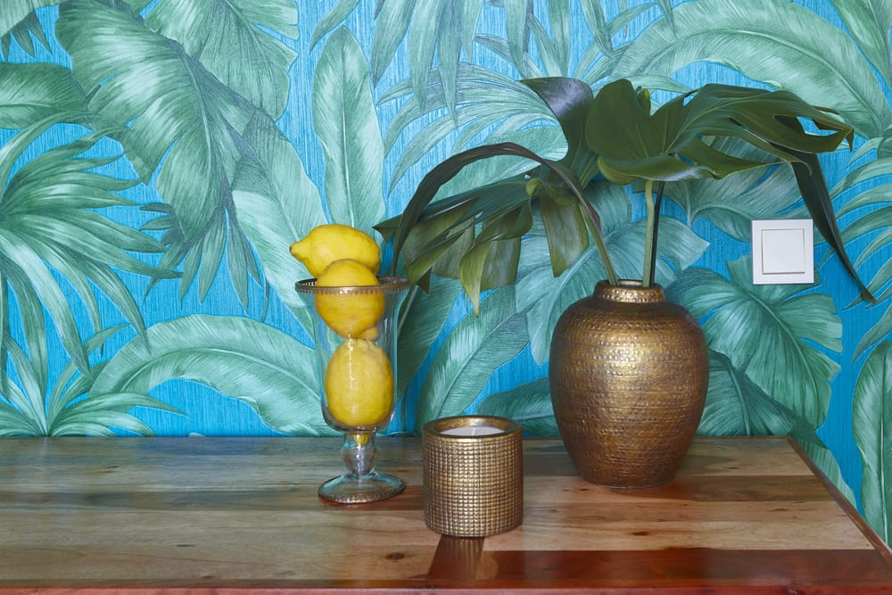 Tropical wallpaper and plant