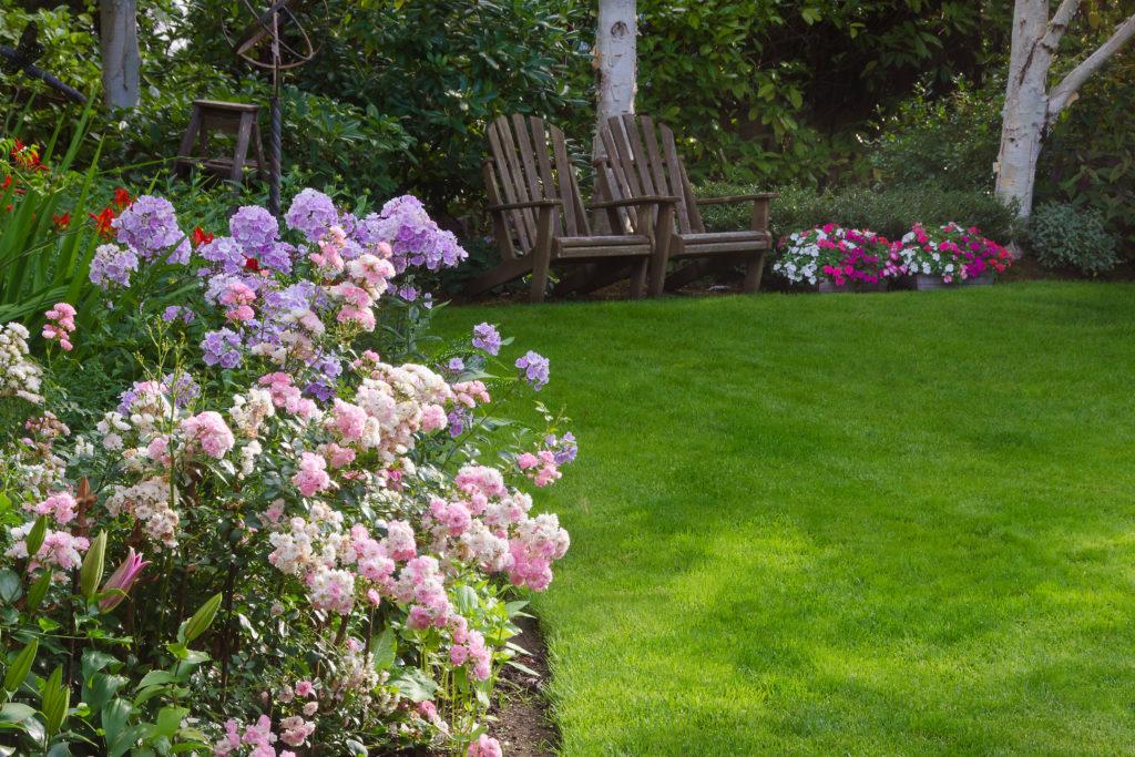 Flower garden at the edge of the backyard