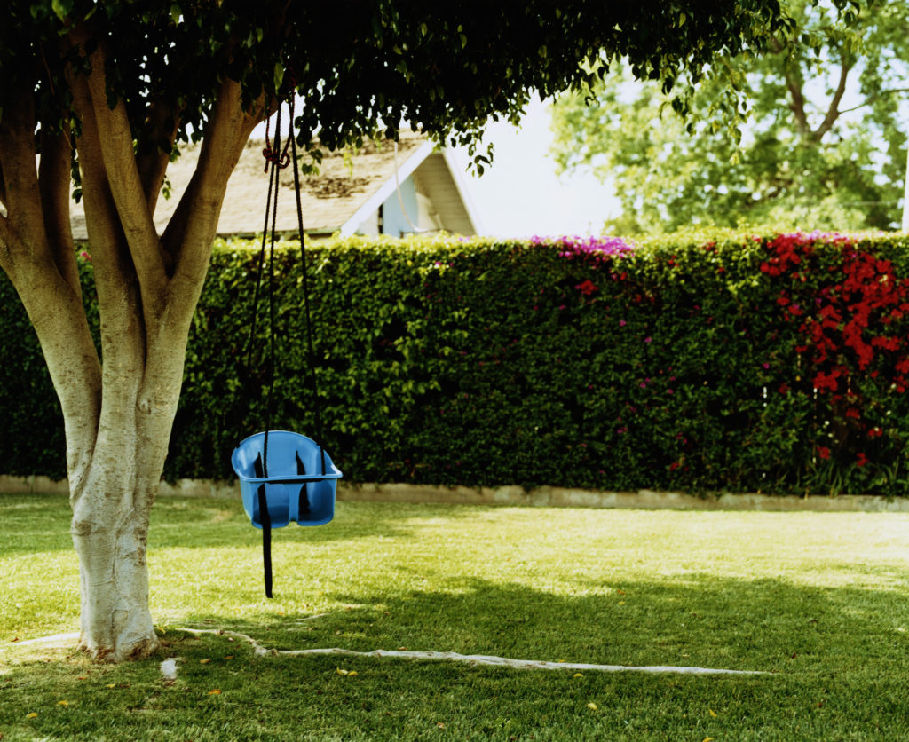 Baby swing chair hanging from tree in backyard