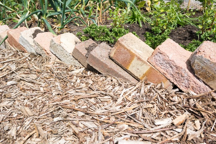 Bricks used as edging to a planted area