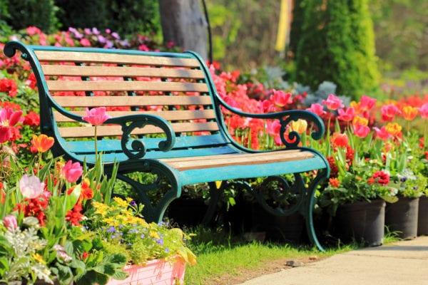 Vintage bench in flower garden