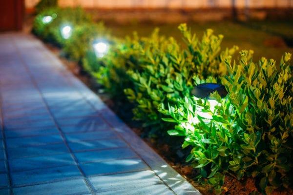 Small garden lanterns along walkway