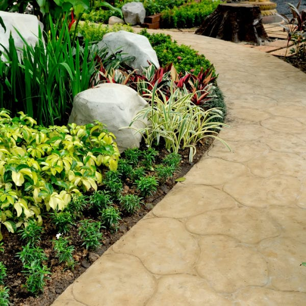 Landscaping alongside stone walkway with different types of plants