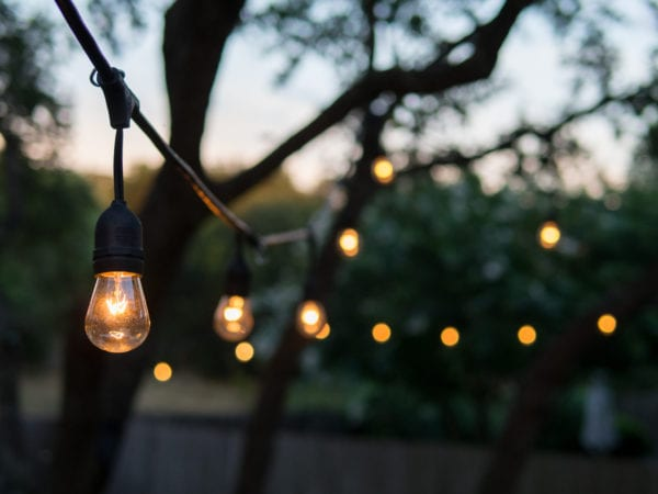 Decorative outdoor string lights hanging on tree at sunset