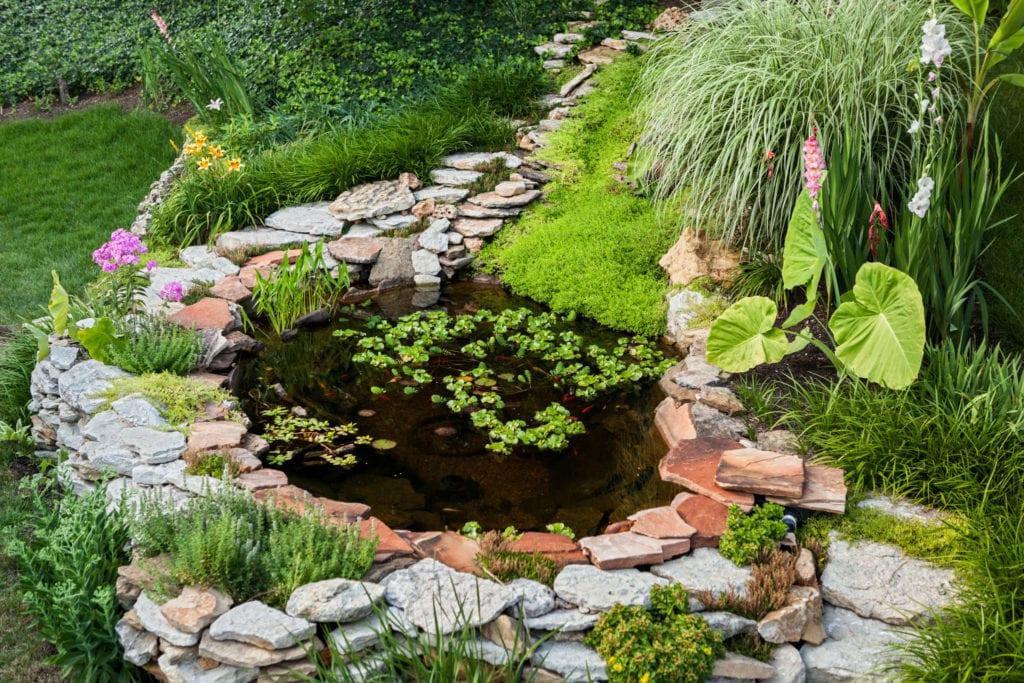 outdoor pond