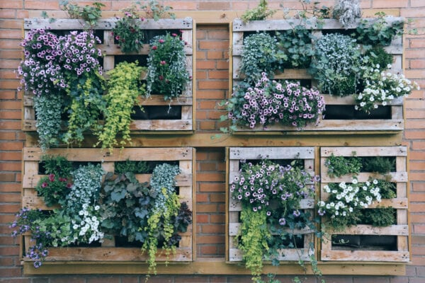 Wall planters on apartment balcony